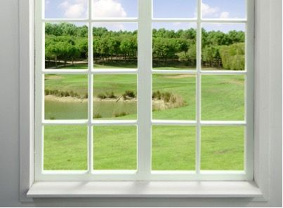 Окна года