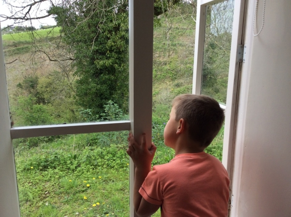 блокираторы на окна